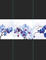 Prints Poster Butterfly Orchid Print On Canvas  3pcs/set (Without Frame)
