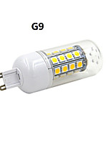 JMTG9/E14 4.5W 480lm 36x5050SMD LED Warm White/White Light Corn Bulb (AC220-240V)