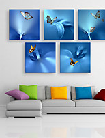 E-HOME® Stretched Canvas Art Butterfly Decorative Painting  Set of 5