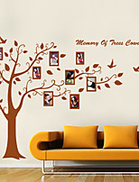Wall Stickers Wall Decals Style Memary of Trees Photo  PVC Wall Stickers