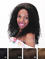 Kinky Curly Human Hair Wigs Top Grade Glueless Indian Virgin Remy Lace Front Wigs With Baby Hair For Black Women