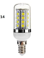 G9/E26/E27 5 W 36 SMD 5050 480 LM Warm White/Cool White Corn Bulbs AC 110-130/AC 220-240 V
