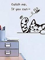 decalcomanie della parete autoadesivo della parete, wall stickers ape pvc belle del fermo del gatto