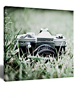 VISUAL STAR® Make Memories - Aestheticism Photographic Camera on the Lawn Canvas Wall Art Ready to Hang