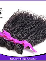 Grade 7A Peruvian Kinky Curly Virgin Hair 3pcs/lot Unprocessed Peruvian Virgin Hair Curly Weave