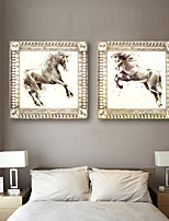 E-HOME® Stretched Canvas Art Fine Horse Decorative Painting  Set of 2