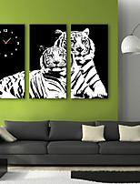 E-HOME® Tiger Clock in Canvas 3pcs