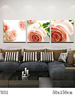DIY Digital Oil Painting With Solid Wooden Frame Family Fun Painting All By Myself Rose Life 7031