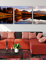E-HOME® Stretched Canvas Art River Bank Scenery Decorative Painting  Set of 3