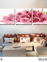 DIY Digital Oil Painting With Solid Wooden Frame Family Fun Painting All By Myself    Pink Rose 7010