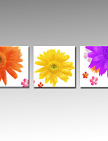 VISUAL STAR®Flower Picture Print On Canvas Beautiful Home Decor Wall Art Ready To Hang