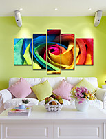 VISUAL STAR®Colorful Flowers Canvas Set of 5 panel Stretched Canvas Print High Quality Canvas Ready to Hang