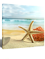 VISUAL STAR® Starfish Beach Scenery Photo Canvas Printing  Ready to Hang