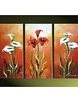 Hand-Painted Clever Calla Lily Flowers  Home Wall Art Decoration  Oil Painting on Canvas  3pcs/set Without Frame