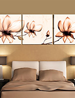 Prints Poster Wall Painting Colorful Flower Home Decorative  Pictures Print On Canvas  3pcs/set (Without Frame)