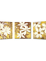 Flower Triptych Canvas Print Stretched Canvas Print Three Panels High Quality Canvas Ready to Hang