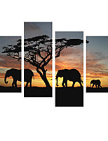 VISUAL STAR®4 Pieces African Elephants stretched Canvas Painting Animal Canvas Ready To Hang