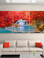 E-HOME® Stretched Canvas Art Red Leaves And Small Waterfalls Decorative Painting Set of 3