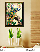 DIY Digital Oil Painting  Large Size Without Frame  Family Fun Painting All By Myself     Peacock 6055