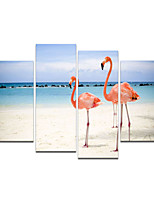 VISUAL STAR®Beautiful Flamingos Animal Stretched Canvas Art Prints