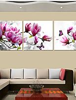 Prints Poster Purple Pink Blue Flower Art  Home Decorative  Pictures Print On Canvas  3pcs/set (Without Frame)