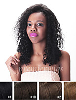 Kinky Curly 7A Unprocessed Virgin Brazilian Human Hair Full Lace Wigs with Baby Hair For Black Women