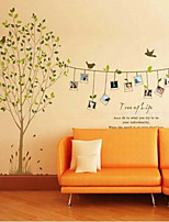 Natural Creative Photo Frame Wall Stickers