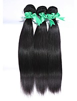 3Pcs/Lot Brazilian Virgin Hair 100% Brazilian Remy Hair Straight 8