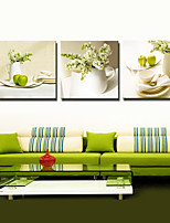 VISUAL STAR®3 panel Flowers Green Color Still Life Painting Canvas Wall Art for Kitchen Decor Ready to Hang
