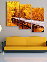 E-HOME® Stretched Canvas Art A Small Wooden Bridge And Yellow Leaves Decoration Painting  Set of 3