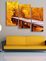e-home® allungata Stampa su tela un piccolo ponte di legno e foglie di colore giallo decorazione della pittura set di 3