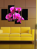VISUAL STAR®4 Panel Orchid Flowers Canvas Print  High Quality Stretched Canvas Ready to Hang
