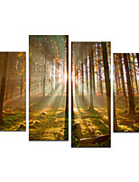 VISUAL STAR® Large size 4 panels Framed Group Canvas Wall Art Ready to Hang
