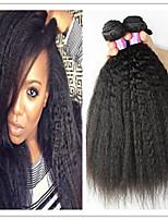 3Pcs/Lot 8A Mongolian Afro Kinky Straight Virgin Hair Natural Afro Kinky Straight Hair Weave