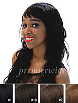 Hot Selling 10''-26'' natural curly 100% Indian Virgin Human Hair Wigs Full Lace Wigs With Baby Hair For Blacek Women