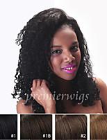 10''-24'' Kinky Curly 100% Brazilian Virgin Human Hair Wigs Full Lace Wigs With Baby Hair For Blacek Women