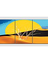 Oil Painting Set of 3 Modern Yellow Tree ,Canvas Material with Stretched Frame Ready To Hang SIZE:50*70CM*3PCS .