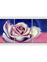 Oil Painting Set of 3 Flower Style ,Canvas Material with Stretched Frame Ready To Hang SIZE:50*70CM*3PCS .