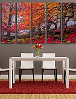 e-Home® opgespannen doek zijt de bladeren van de bomen decoratief schilderen set van 5
