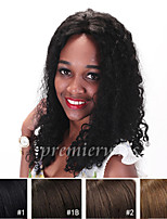 12''-20'' Curly Brazilian Virgin Remy Human Hair Wigs Lace Front Wigs With Baby Hair For Black Women