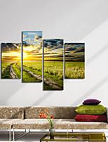 visivo gruppo di pannelli star®4 muro dipinto tramonto paesaggio su tela di alta qualità tela pronta per essere appesa