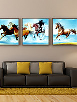 Prints Poster Sell Pentium Horse Modern Wall Oil Painting Home  Print On Canvas  3pcs/set (Without Frame)