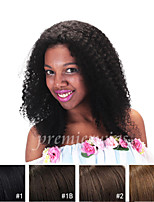 Cheap Kinky Curly Remy Indian 100% Human Hair Full Lace Wigs with Baby Hair For Black Women 7A