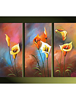 Hand-Painted  Calla Lily Flowers  Home Wall Art Decoration  Oil Painting on Canvas  3pcs/set Without Frame