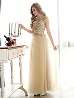 Formal Evening Dress A-line Bateau Floor-length Tulle