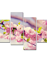 VISUAL STAR®Cherry Blossom Home Decor Flower Canvas Painting Wall Art Ready to Hang