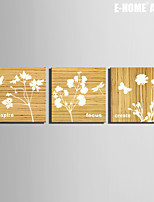 E-HOME® Stretched Canvas Art White Flower Decorative Painting Set of 3