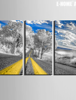 E-HOME® Stretched Canvas Art Highways And Trees Decoration Painting  Set of 3