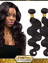 6A Unprocessed Peruvian human Hair Extension Curly Wave 10