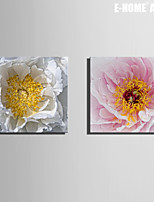 E-HOME® Stretched Canvas Art Flowers of The Core Decorative Painting Set of 2